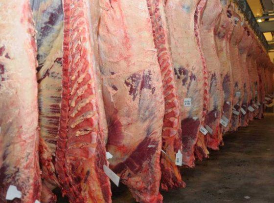 Exportaciones Cárnicas Argentinas